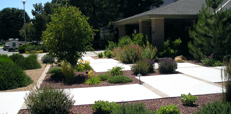landscape ideas by nicocado landscape design albuquerque