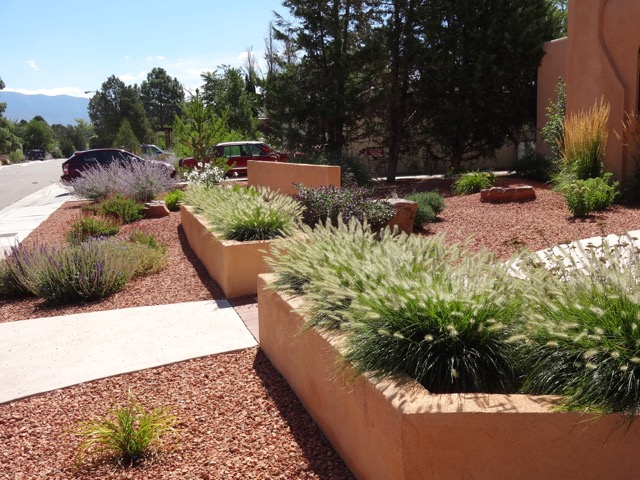 albuquerque xeriscape before and after