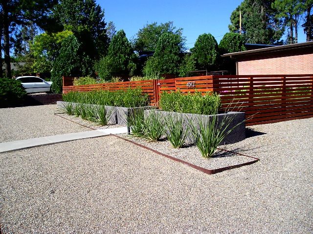 Mid century modern red twig studio landscape design for Modern backyard landscaping