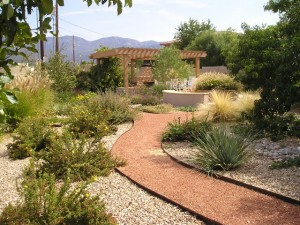 Backyard pathfinder red twig studio landscape design for Landscaping rocks albuquerque